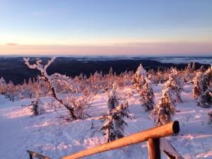 Winter DAX