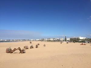Afrika_Marokko.jpg_2
